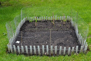 Community Garden Rental Program